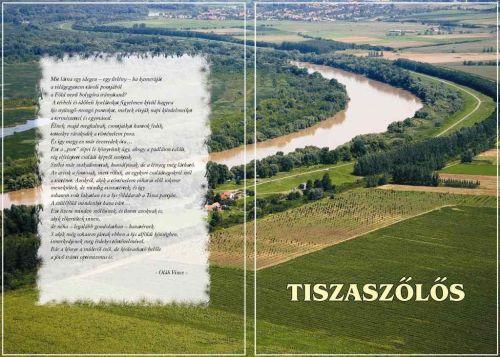 Elkészült Tiszaszőlős monográfiája!