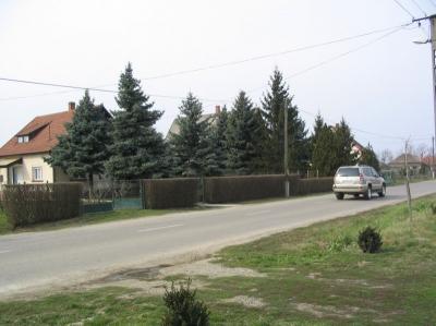 utcak22 20080219 1553096333