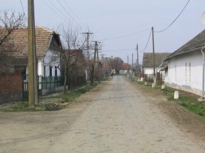 utcak36 20080219 1363533077