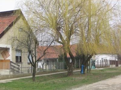 utcak7 20080219 2074379773